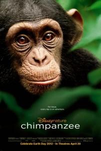 chimpanzeeDISNEY